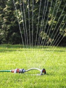 Zum Rasen sprengen wurde ein schwenkender Rasensprenger auf leuchtend grünem Rasen platziert, der das Wasser fächerförmig verteilt.