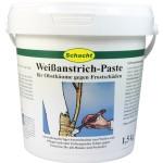 Winterschutz für Pflanzen: Weißanstrich