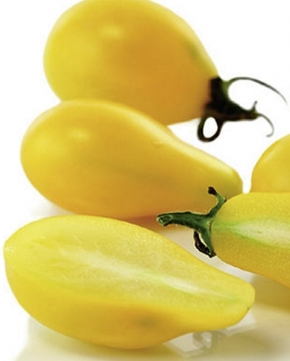 Tomaten Gelbe Obsttomate Yellow Pearshaped