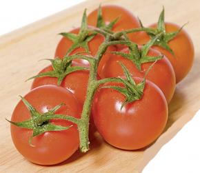 Tomaten Kirschtomate Philovita