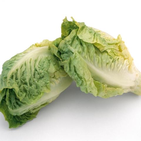 Romana Bindesalat Salat Attico