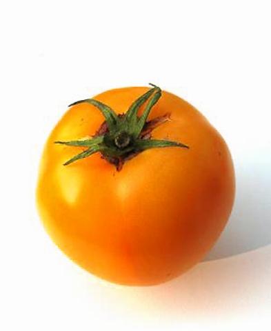 Tomaten Gelbe Tomate Goldene Königin