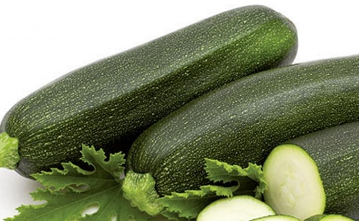 Zucchini Diamant mittelgrüne Früchte