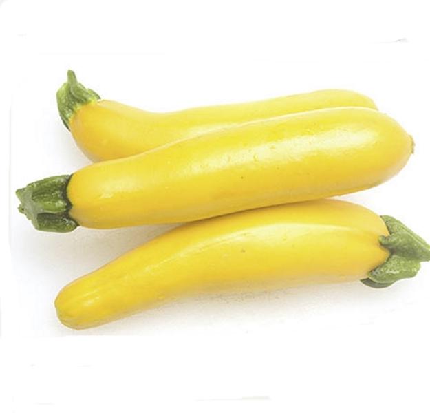 Zucchini Gold Rush Gelbe Zucchini