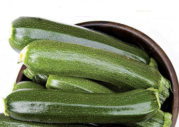 Zucchini BIO Zucchini Leila Profisorte