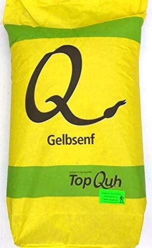 Gelbsenf Top Q Gründüngung 25 kg frische Saat