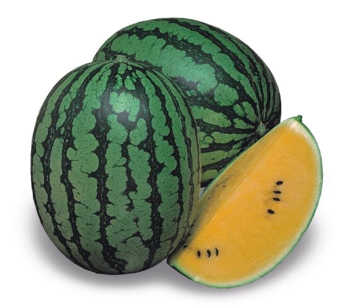 Melonen Wassermelone Gelbfleischige Luteo