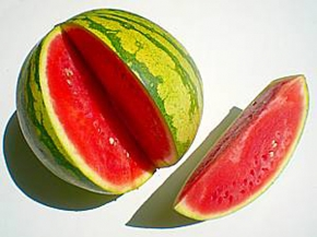 Melonen Wassermelone Red Comet