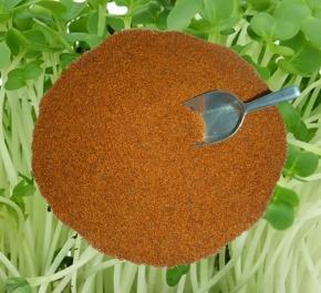 Kresse Gartenkresse Einfache 5000g frische, reine Ware