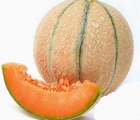 Melonen Zuckermelone Gandalf F1